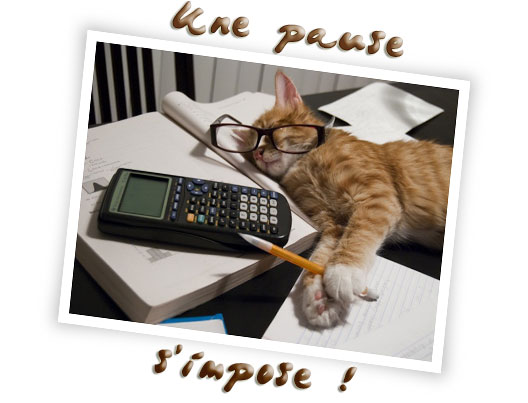 chat-pause-s-impose